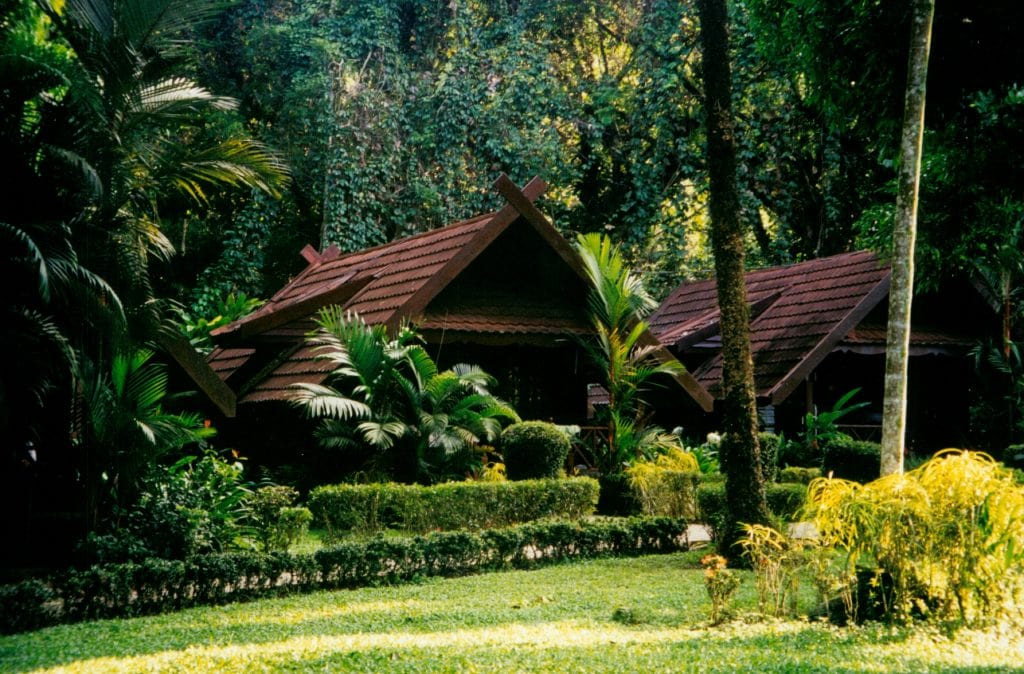 Taman Negara Jungle chalet, hotel