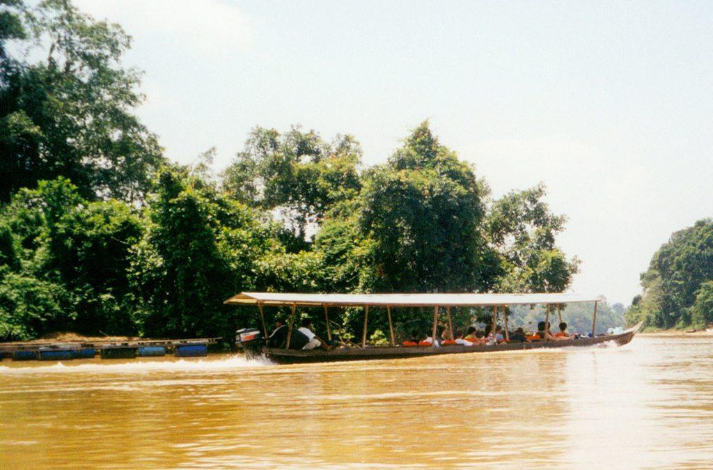 Adventure in the Taman Negara Jungle