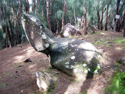 The Phallic Rockm Molokia Hawaii