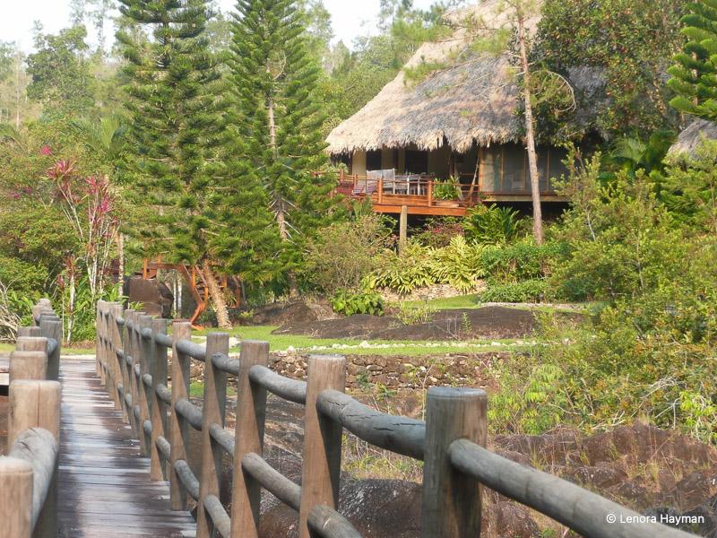 Blancaneaux Lodge amidst foliage