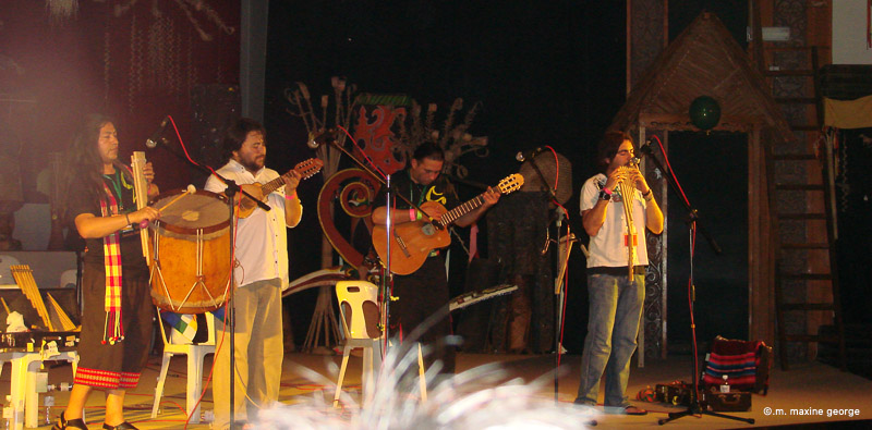 An afternoon concert at the Rainforest World Music Festival in Sarawak, Malaysia. Photo by M. Maxine George