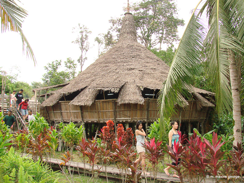 thatched roof. sarawak cultural village