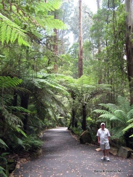 Australia's William Ricketts' Sanctuary